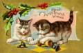 Gattini di Natale