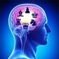 scacchi e cervello